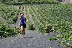 Zona de cultivos de uva