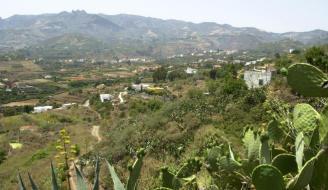 Vista desde Pino Santo Bajo
