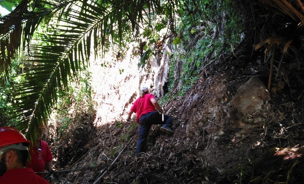 Operarios del Plan de Empleo retirando residuos vegetales